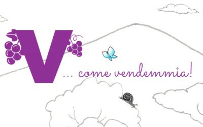 V come… Vendemmia!